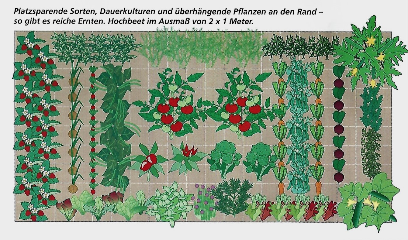 Selbstversorgergarten Salzburger Lagerhaus